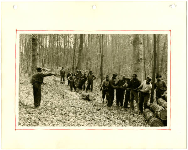Fort Hill, logging photograph