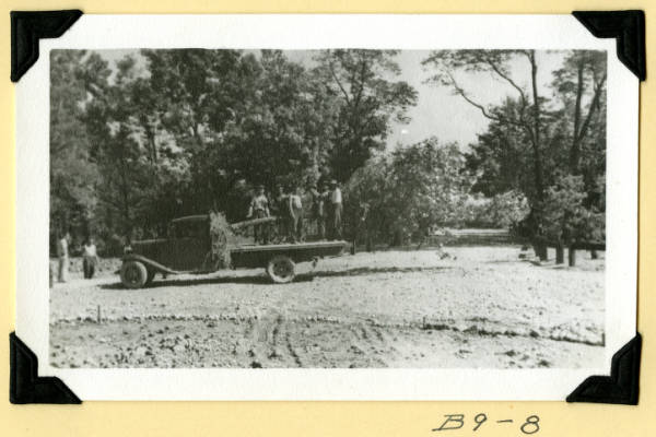 Fort Hill, planting trees photograph