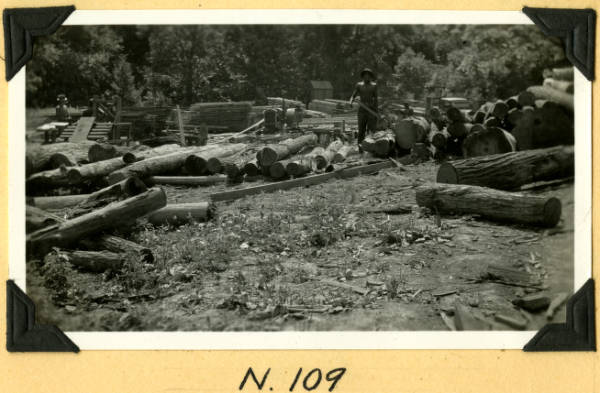 Fort Hill, logs delivered to sawmill photograph
