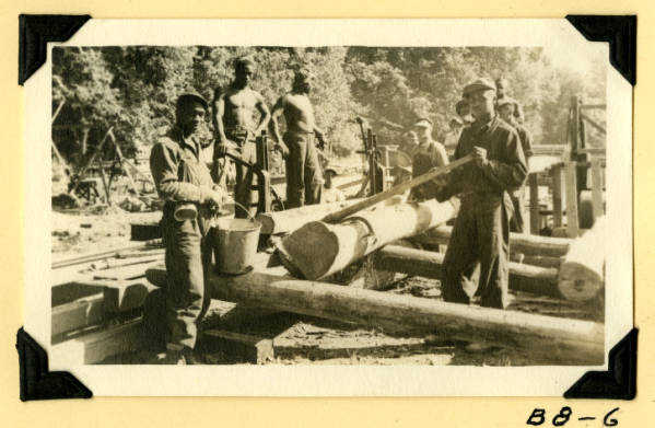 Fort Hill, hauling logs to sawmill photograph