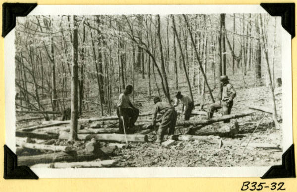 Fort Hill, collecting small logs photograph