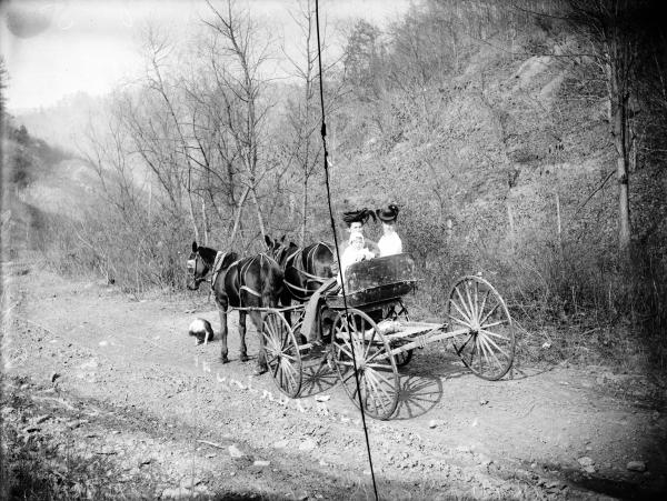 Women in buggy photograph