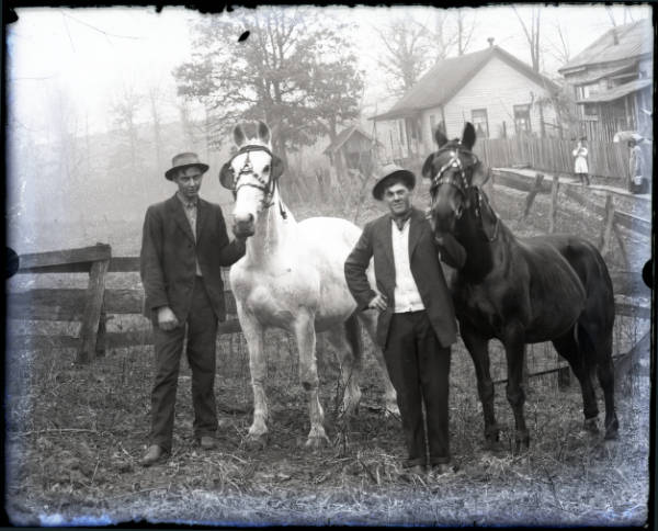 Two men with horses photograph