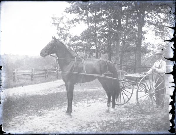 Man with a horse cart