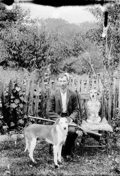 Man with shotgun and dogs