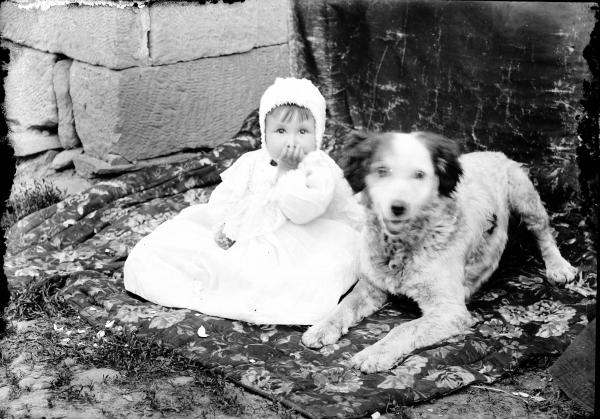 Child with family dog