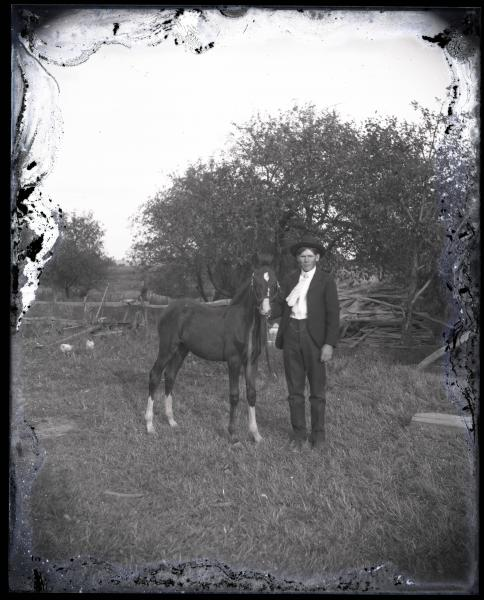 Man with foal photograph