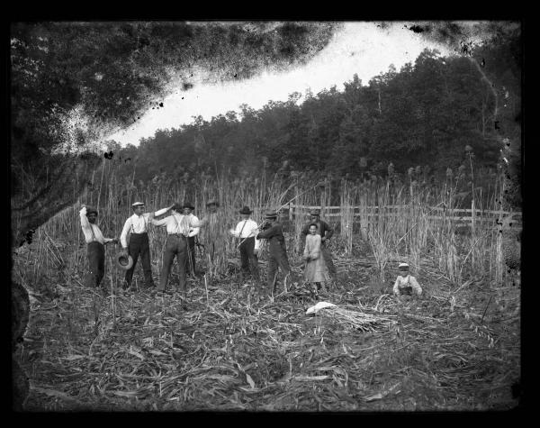 Field workers photograph