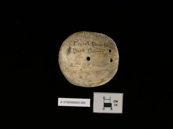 Gorget from Glacial Kame Culture