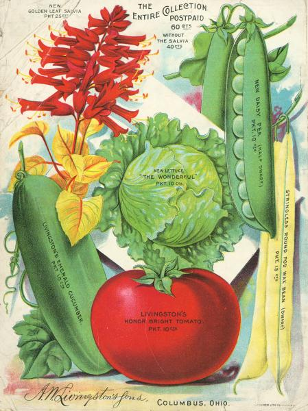 A. W. Livingston's Sons seed catalog