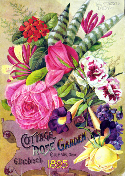 Cottage Rose Garden catalog cover photograph