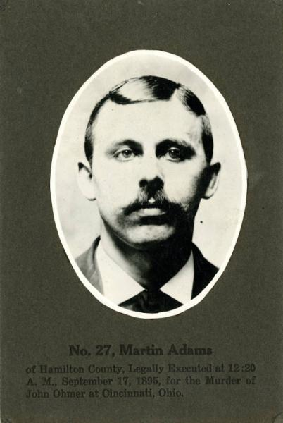 Martin Adams portrait