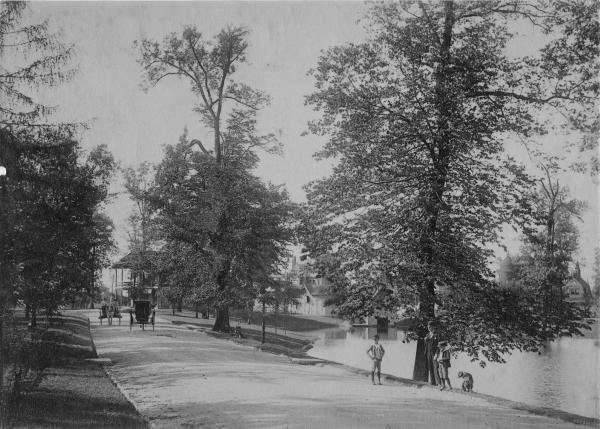 Park road along body of water photograph
