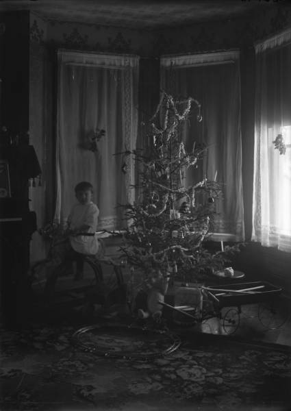 Young boy with Christmas tree photograph