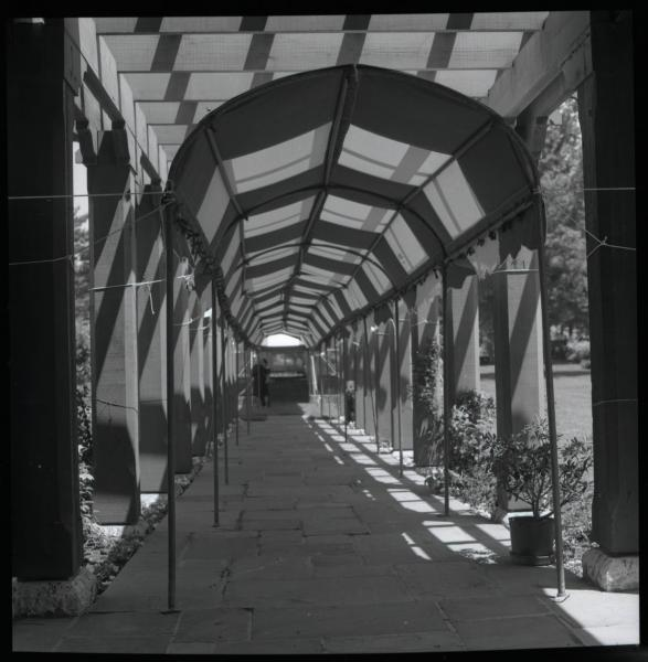 Governor's Mansion walkway photograph