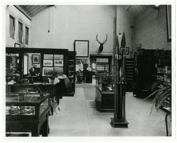 Archaeology library and office at Page Hall