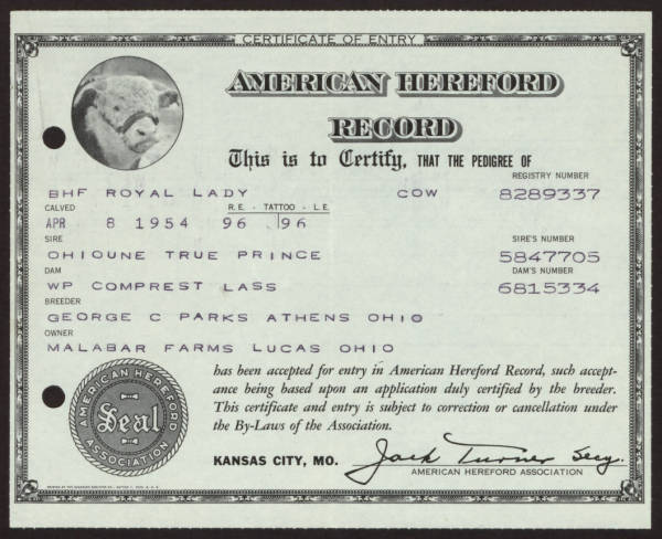 American Hereford Record registration for 'Royal Lady'