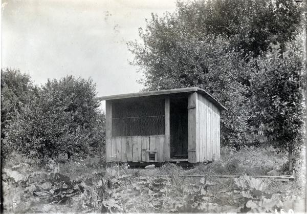 Montgomery farm photograph
