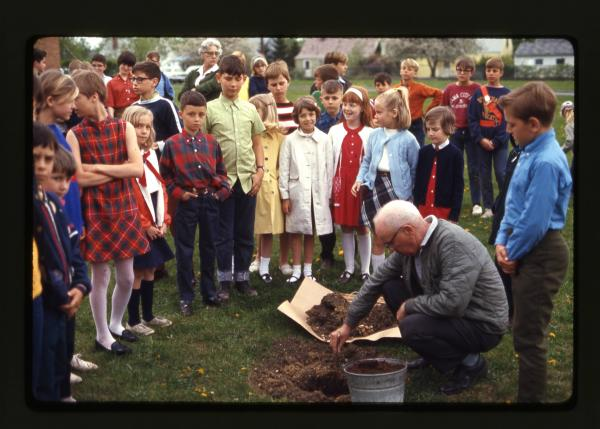 Elementary students plant trees