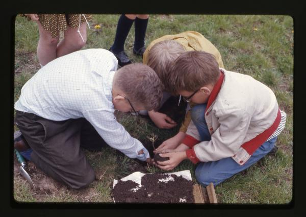 Arbor Day students plant trees