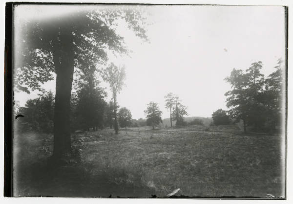 Woods at Fort Ancient photograph