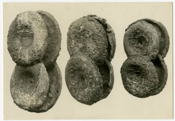 Hopewell Mound Group copper ears spools photograph
