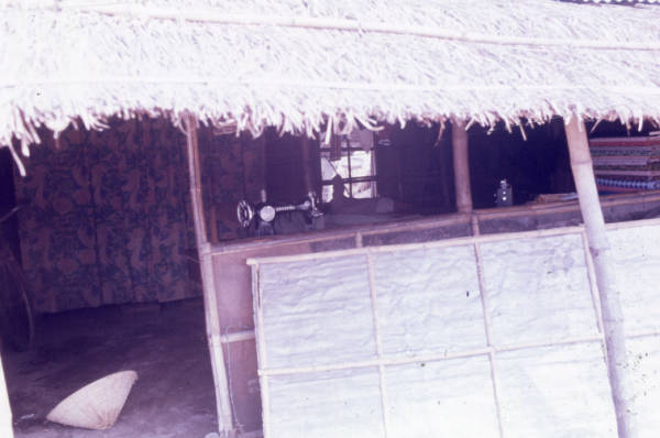 Thatched hut photograph