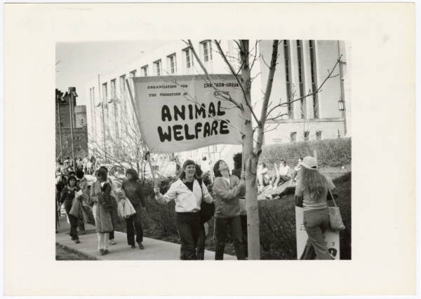 Animal welfare demonstration photograph