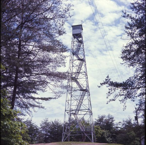 Shawnee Lookout Tower photograph