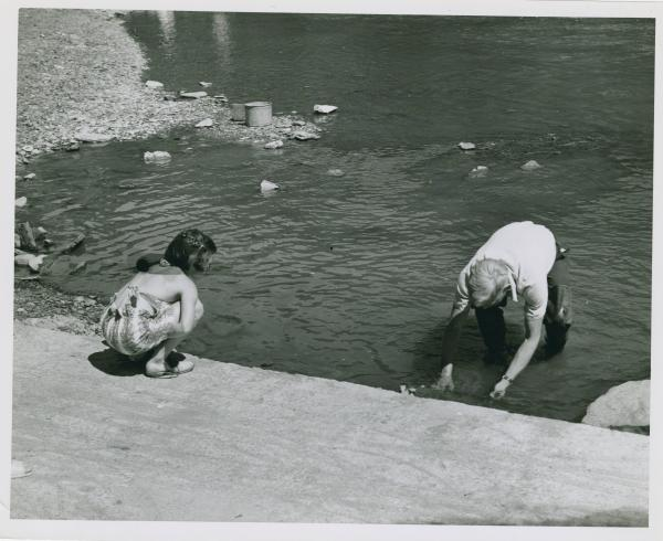 Searching in the stream