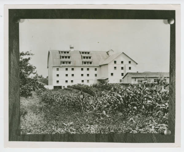 Ohio Agricultural and Mechanical College Chicken Hatchery