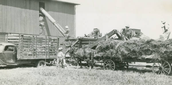 Threshing at Ashland County farm photograph