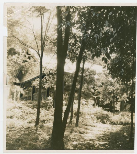 Cantwell Cliff shelter house photograph