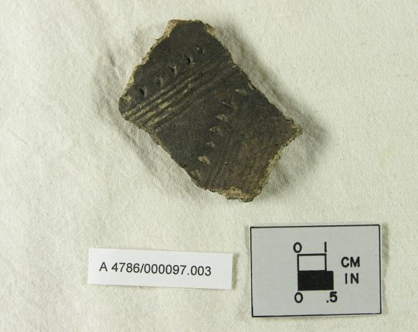 Parker Festooned Ceramic Body Sherd